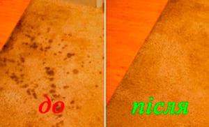 stain-on-carpet